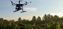 Drony w służbie lasom. Posadzą do miliarda drzew rocznie