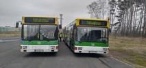 Babimost: Kolejne dwa autobusy na płycie lotniska