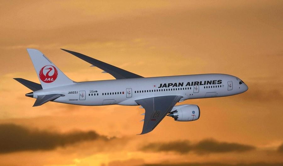 Japonia: Drastyczne cięcia siatek. Władze pomogą liniom przetrwać