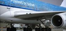 Air France-KLM: Pierwszy program obniżający emisję CO2 w przewozach cargo