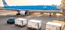 7,1 mld euro rocznej straty Air France-KLM i 67 proc. mniej podróżnych