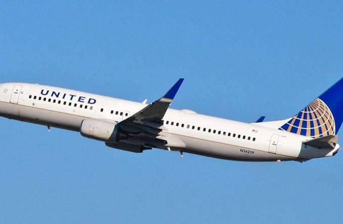 Pies nie przeżył lotu samolotem. United Airlines: Bierzemy za to odpowiedzialność